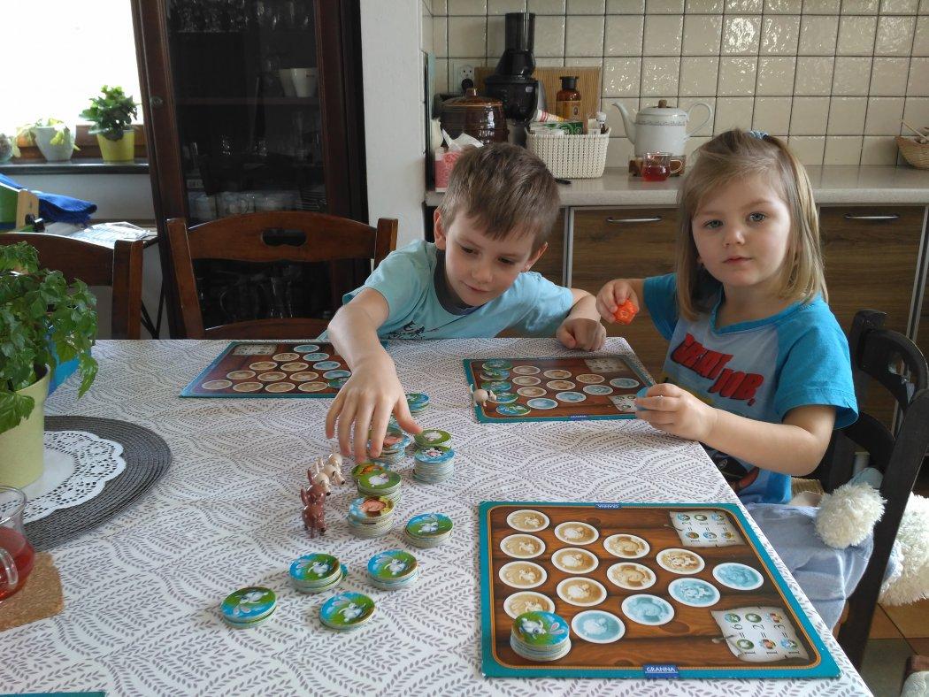 Gry planszowe – wspólny wartościowy czas nie tylko dla dzieci.